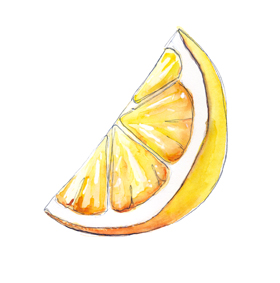 lemon watercolor by tracy hetzel